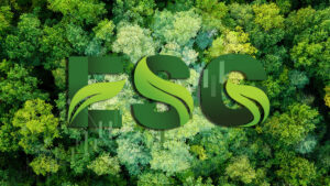 ESG and the financial industry